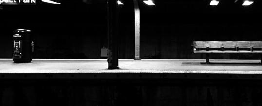 Subtle Light – Week 11/11-11/17
